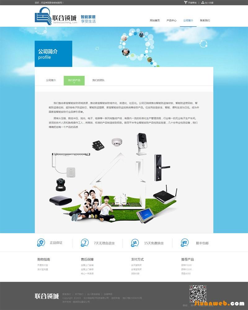 电子公司网站设计